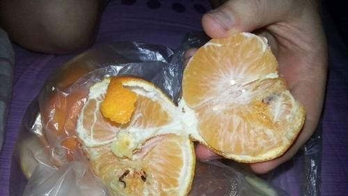 фото черви в мандарине