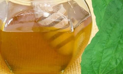 мед с подорожником